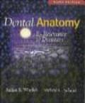 Julian B. Woelfel,Rickne C. Scheid - Dental Anatomy Its Relevance to Dentistry