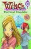E Lenhard - WITCH Chapter Book Fire of Friendship - Book #4
