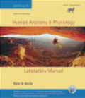 Elaine Marieb,S Kravits - Human Anatomy & Physiology