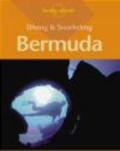 Lawson Wood - Diving & Snorkeling Bermuda 1e