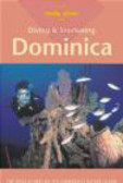 Michael Lawrence - Diving & Snorkeling Dominica 1e