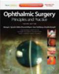 Anselm Kampik,Ivan Goldberg,Helen Danesh-Meyer - Ophthalmic Surgery: Principles and Practice