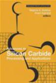 Stephen E. Saddow,S Saddow - Advances in Silicon Carbide Processing & Applications