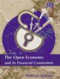 Penelope Hawkins - Open Economy & Its Financial Constraints