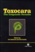Toxocara