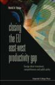David Dyker - Closing The Eu East-West Productivity Gap