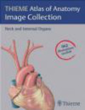 Udo Schumacher,Edward Lamperti,Michael Schuenke - Atlas of Anatomy Image Collection Neck & Internal Organs DVD