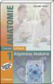 W Graumann - CompactLehrbuch Anatomie v 1