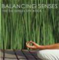 Jorg Sundermann,Kate O`Brien,K O Brien - Balancing Senses