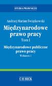 Andrzej Marian Świątkowski - Międzynarodowe prawo pracy. Tom I Międzynarodowe publiczne prawo pracy. Wolumen 1