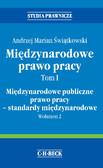 Andrzej Marian Świątkowski - Międzynarodowe prawo pracy. Tom I Międzynarodowe publiczne prawo pracy - standardy międzynarodowe. Wolumen 2