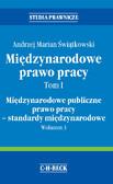 Andrzej Marian Świątkowski - Międzynarodowe prawo pracy. Tom I. Międzynarodowe publiczne prawo pracy - standardy międzynarodowe. Wolumen 3
