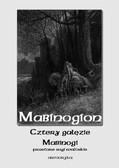 Nieznany - Mabinogion. Cztery gałęzie mabinogi