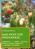 Andrzej Sarwa - Sad inny niż wszystkie