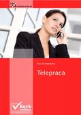 Ewa Drzewiecka - Telepraca