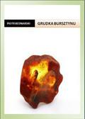 Piotr Bednarski - Grudka bursztynu