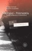 Dariusz Cichocki, Marzena Godzińska - Adampol - Polonezköy. Między polskością a tureckością. Monografia współczesnej wsi