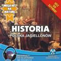 Krzysztof Pogorzelski - Historia - Polska Jagiellonów