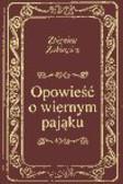Zbigniew Żakiewicz - Opowieść o wiernym pająku