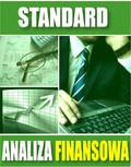 e-BizCom - Analiza Finansowa - wersja Standard