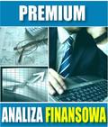 e-BizCom - Analiza Finansowa - wersja Premium