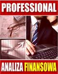 e-BizCom - Analiza Finansowa - wersja Professional