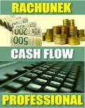 e-BizCom - Rachunek Cash-Flow - wersja Professional