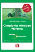 Johann Wolfgang Goethe - Cierpienia młodego Wertera