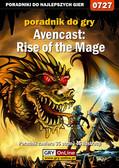 Adrian 'SaintAdrian' Stolarczyk - Avencast: Rise of the Mage - poradnik do gry