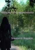 Sławomir Bogacki - Mroczne (nie) opowiadania