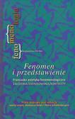 Fenomen i przedstawienie. Francuska estetyka fenomenologiczna