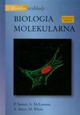Praca zbiorowa - Krótkie wykłady Biologia molekularna