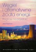 Taubman Jerzy - Węgiel i alternatywne źródła energii. Prognozy na przyszłość