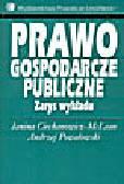 Ciechanowicz-McLean J., Powałowski A. - Prawo gospodarcze publiczne. Zarys wykładu